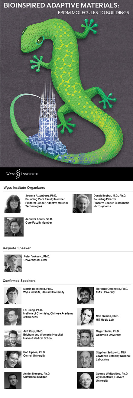Web_ICD_Lectures_14_Wyss_Poster